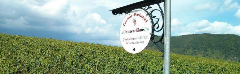 Ferienweingut Könen - Klaus